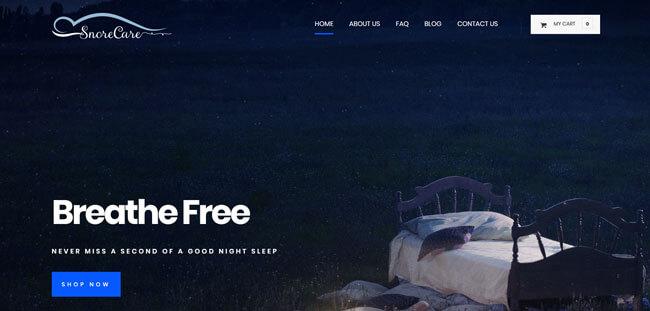 SnoreCare homepage