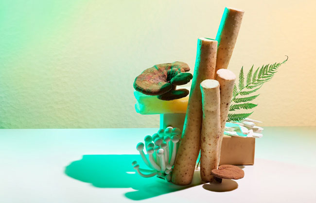 Remrise medicinal ingredients